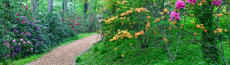 Path HamiltonGardens HWS, GA BenitaEsposito